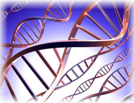 Badania_genetyczne
