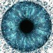 eye-1873053_960_720